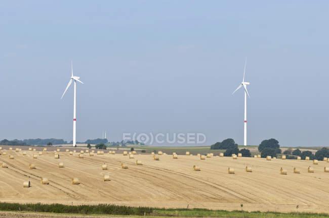 Wind turbines on harvested field — Stock Photo