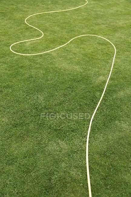 Garden hose on green grass — Stock Photo