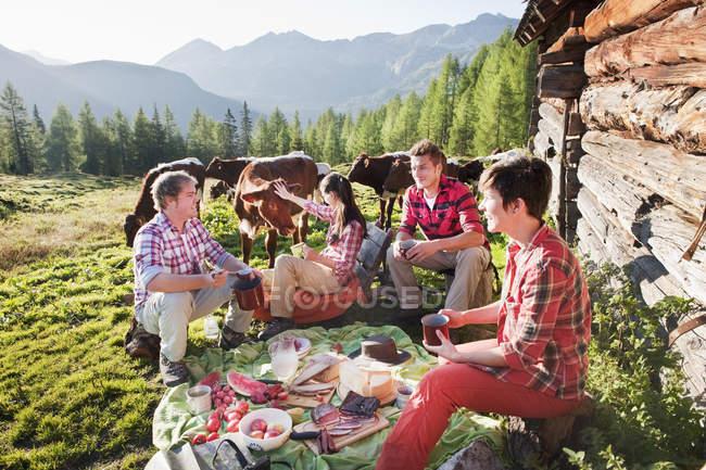 Uomini e donne che fanno picnic — Foto stock