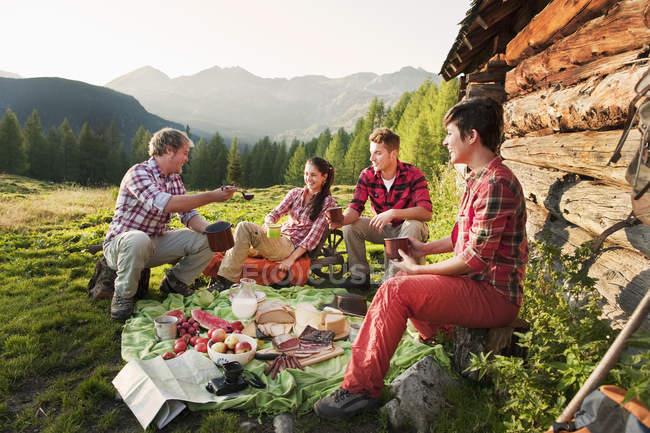 Hombres y mujeres de picnic - foto de stock