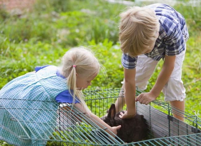 Menino e menina coelho de estimação no jardim — Fotografia de Stock