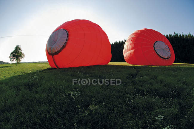 Два повітряних кулях у лузі — стокове фото