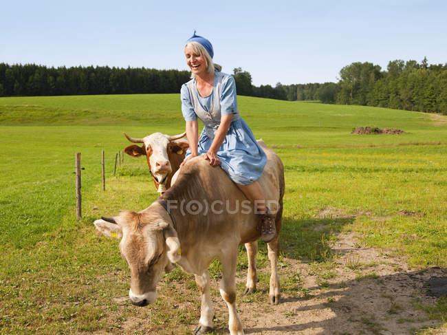 Літня жінка з корови на фермі — стокове фото