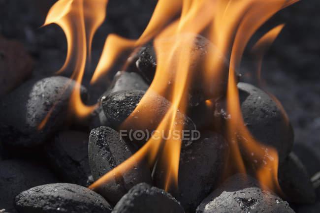 Closeup view of burning charcoal blocks — Stock Photo