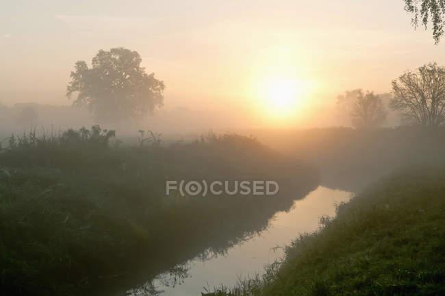 Veduta degli alberi e del fiume nella nebbia mattutina a Brandeburgo, Germania — Foto stock
