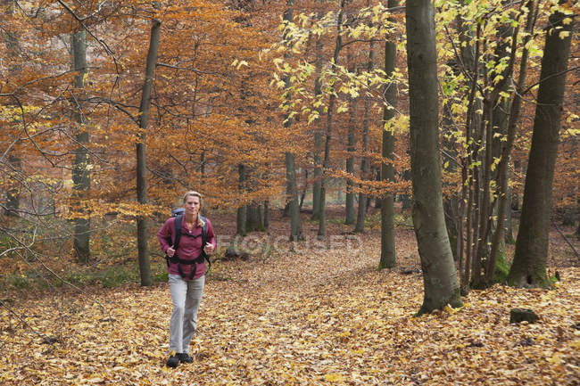 Mature woman hiking in autumn forest — Stock Photo