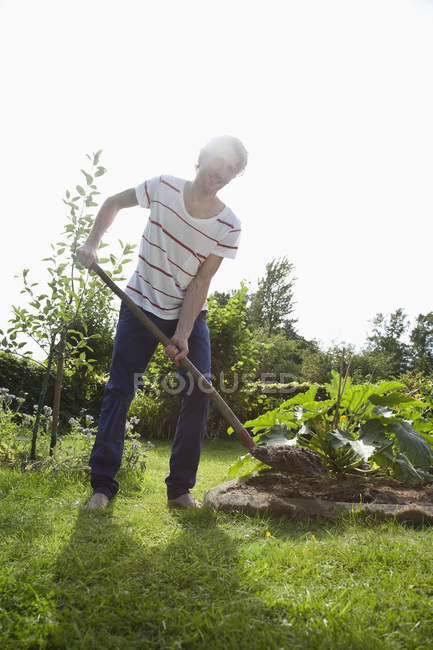 Man gardening in allotment garden — Stock Photo