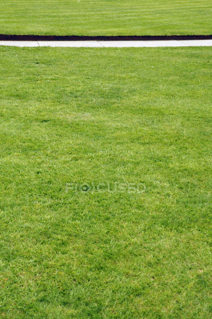 UK, England, Oxford, Empty path through green grass — Stock Photo