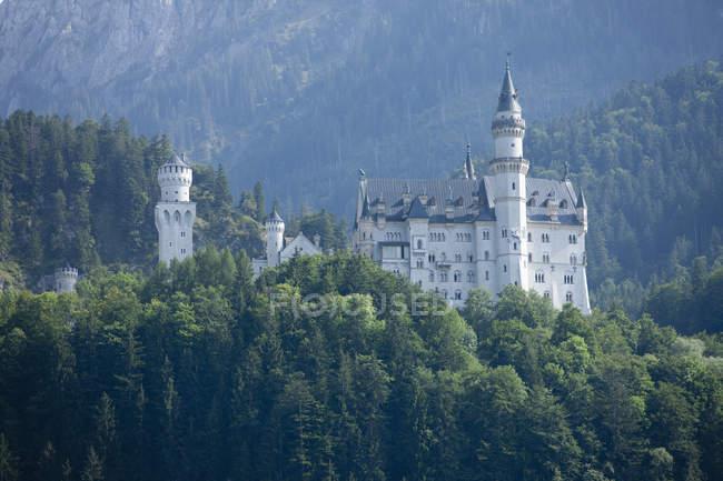 Германия, Бавария, Вид на замок Нойшванштайн на холме с деревьями — стоковое фото