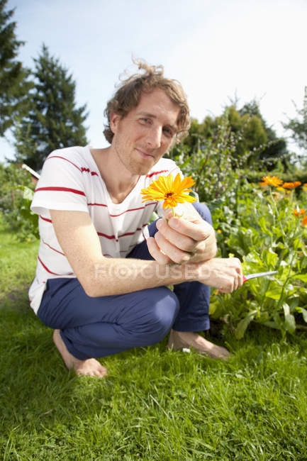 Man holding marigold in allotment garden — Stock Photo