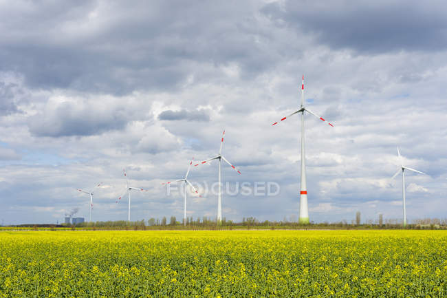 Wind turbine in wind farm — Stock Photo