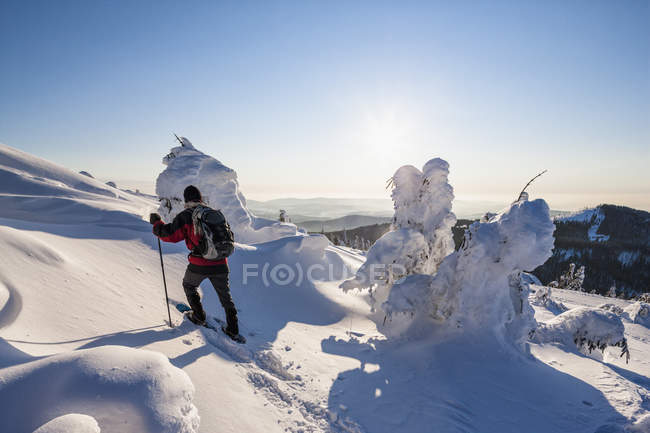 Germany, Bavaria, Person hiking on mountain at Bavarian Forest — Stock Photo
