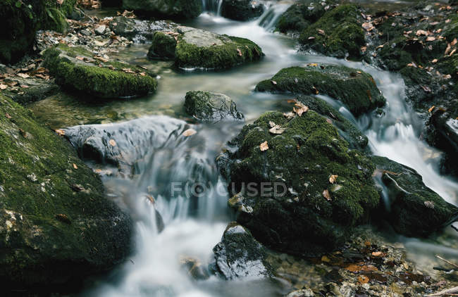 Germany, Bavaria, River flowing through moss covered rocks — Stock Photo
