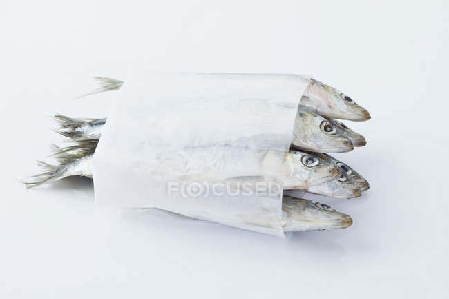 Sardines wrapped in wax paper — Stock Photo