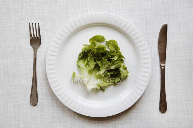 Salatblätter auf weißem Teller mit Gabel und Messer — Stockfoto