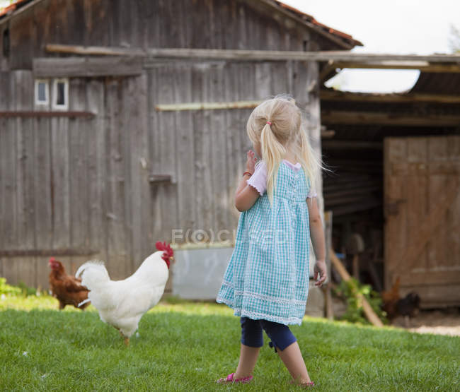 Nettes kleines Mädchen mit Huhn auf dem Bauernhof — Stockfoto