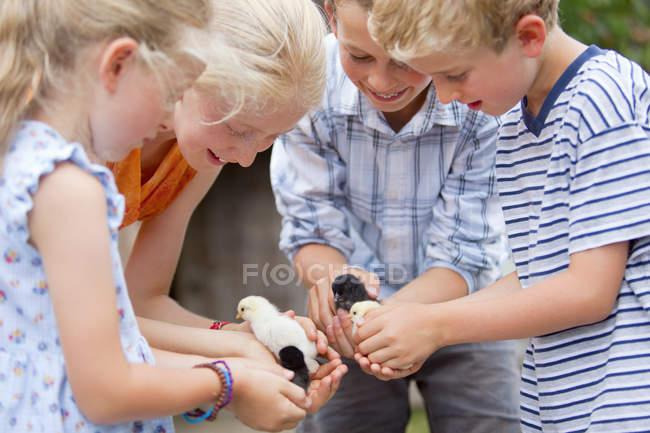 \Group детей, держа младенца цыплят на природе — стоковое фото