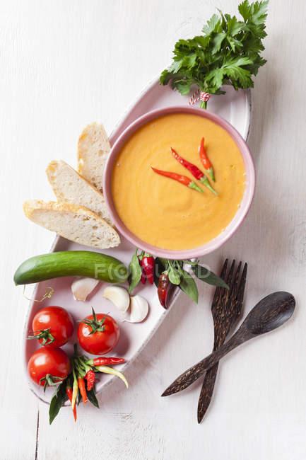 Schüssel mit Gazpacho mit Brot — Stockfoto