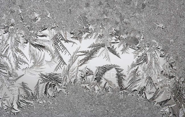 Closeup da textura da janela coberta com cristais de gelo — Fotografia de Stock
