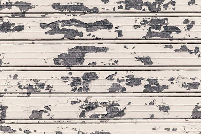 Old White grunge door, full frame — Stock Photo