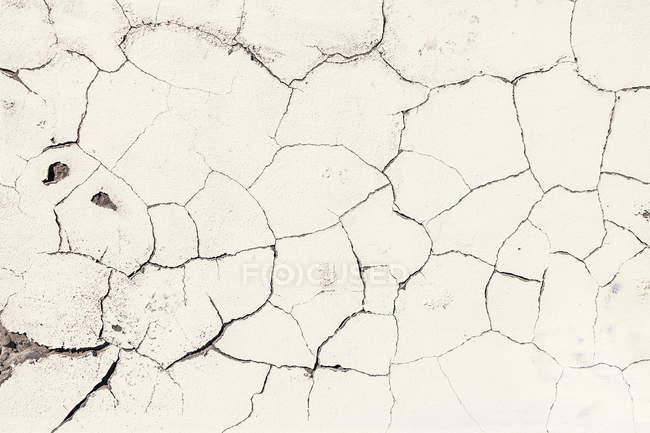 Spanien, Cadiz, Crumbled Wand, Nahaufnahme — Stockfoto