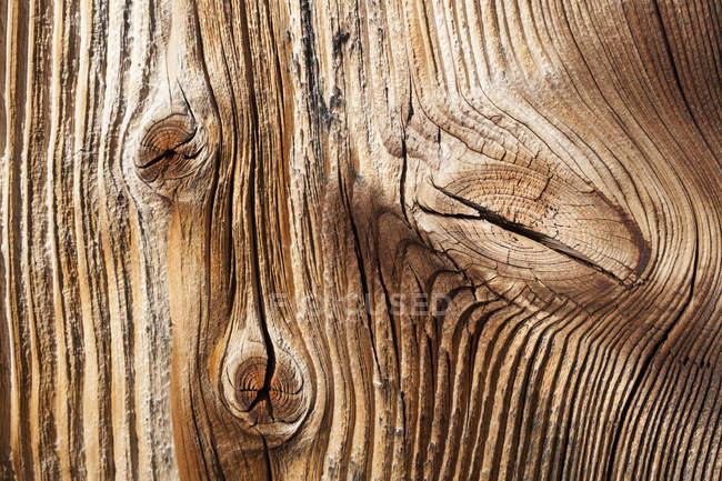 Alten Fichte Holzplatte, Nahaufnahme — Stockfoto