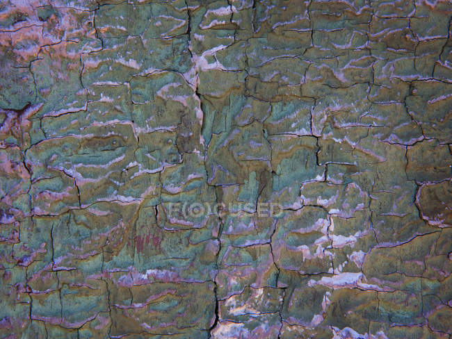 Cracked structure of house front, close up — Stock Photo