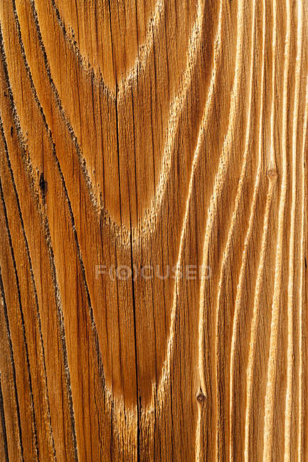 Germany, Old spruce wood board, close up — Stock Photo