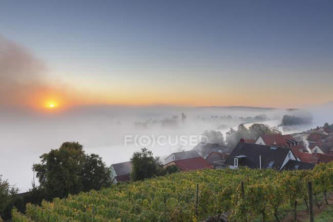 Germania, Baviera, Wipfeld, villaggio e vigneto all'alba — Foto stock