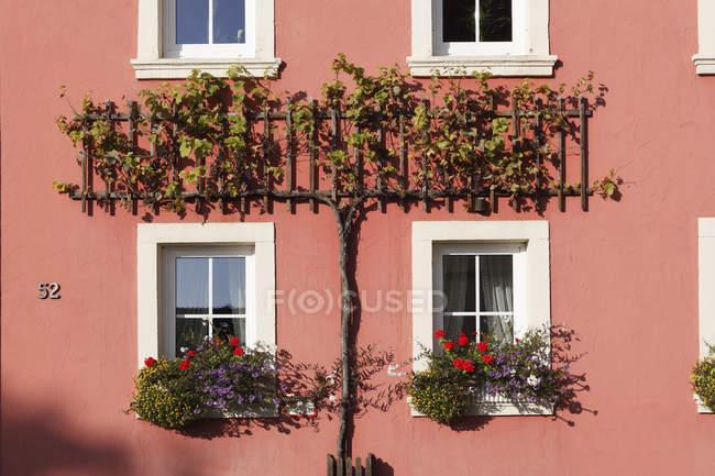 Alemania, Baviera, Garstdt, vista de vid en casa fuera de - foto de stock
