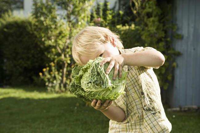 Мальчик держит Савой перед лицом — стоковое фото