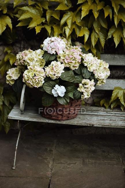Tlf000657 — Fotografia de Stock