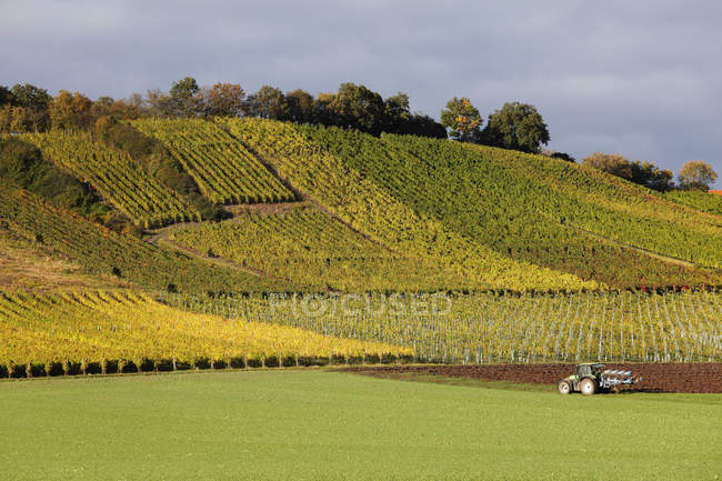 Germany, Bavaria, Michelau im Steigerwald, View of vineyards and land vehicle — Stock Photo
