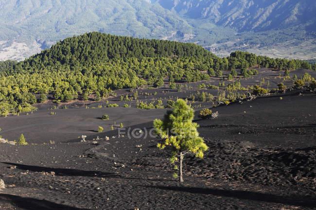 Вулканічні гори краєвид — стокове фото