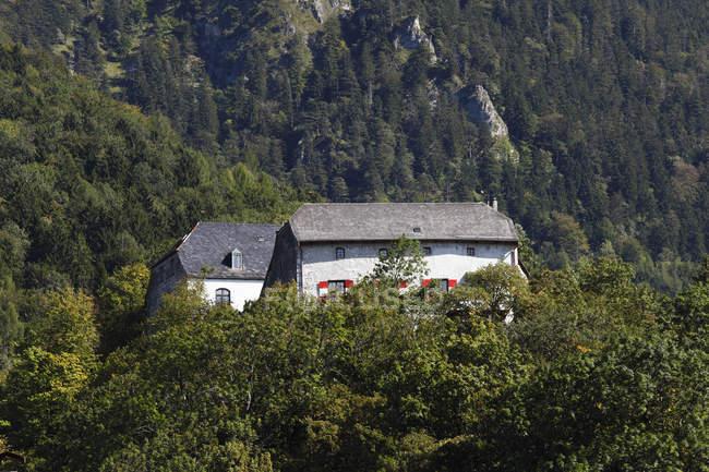 Germany, Bavaria, Upper Bavaria, Chiemgau, Marquartstein Castle between trees — Stock Photo