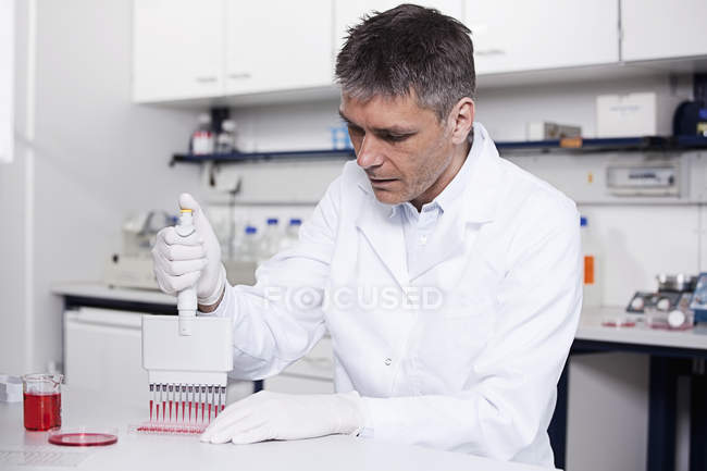 Ученый, заливка Красная жидкость с пипеткой — стоковое фото