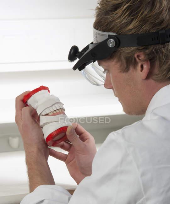 Зубной врач изучает протезы в стоматологической лаборатории — стоковое фото