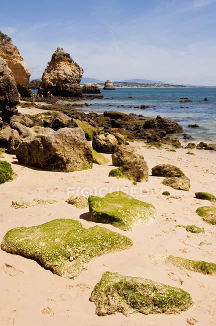 Portugal, Lagos, vista da Praia da Camilo — Fotografia de Stock