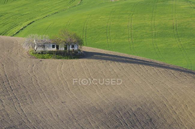 Испании, Андалусия, загородный дом в распаханных поле — стоковое фото