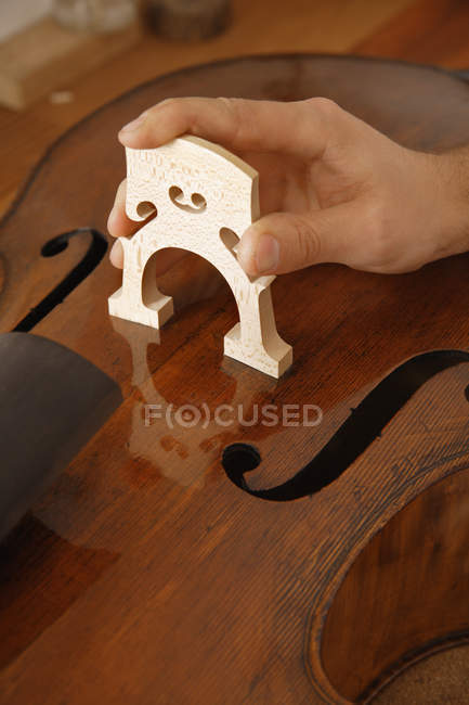 Male hand making violin — Stock Photo