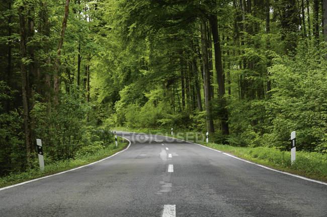 Германия, Бавария, Пустая дорога через лиственный лес — стоковое фото