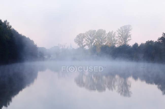 Oggy lake with reflected tress — Stock Photo