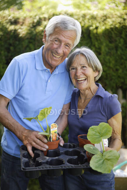 Senior couple with tray of seedlings in garden — Stock Photo