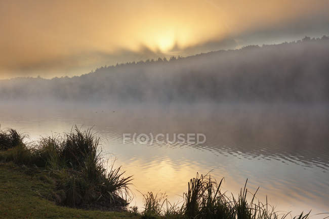 Misty Lake bei Sonnenaufgang — Stockfoto