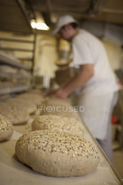 Бейкер, положив буханка хлеба выпечки лоток — стоковое фото
