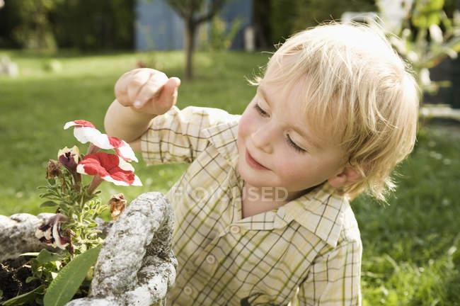 Мальчик нюхает цветы — стоковое фото