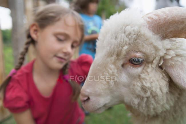Giovane ragazza caucasica con pecore in giardino — Foto stock