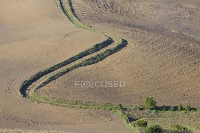 Huellas de neumáticos a través del campo arado - foto de stock