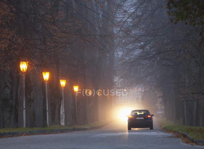 Автомобиль проезжает по дороге туманным утром — стоковое фото