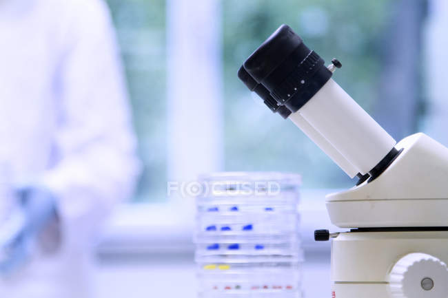 Petrischalen und Mikroskop — Stockfoto